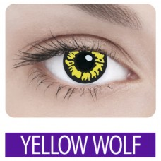 ADRIA Crazy YELLOW WOLF (1 шт)